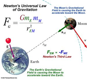 newton gravity